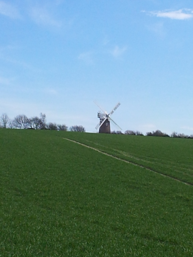 Wilton Windmill on the horizon